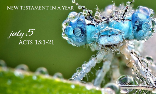 new-testament-in-a-year-july-5
