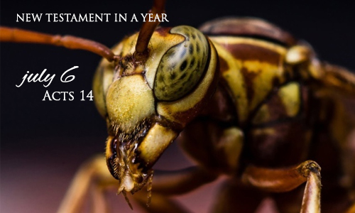 new-testament-in-a-year-july-6