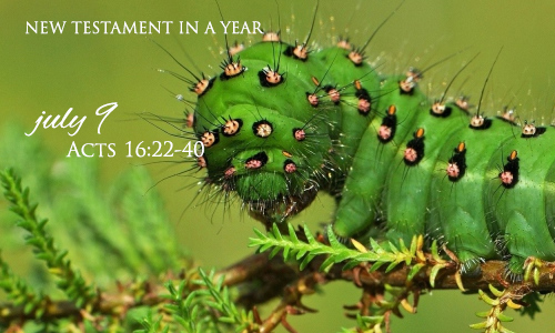 new-testament-in-a-year-july-9