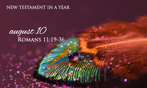 new-testament-in-a-year-august-10