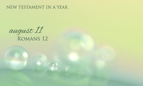 new-testament-in-a-year-august-11