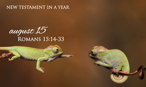 new-testament-in-a-year-august-15
