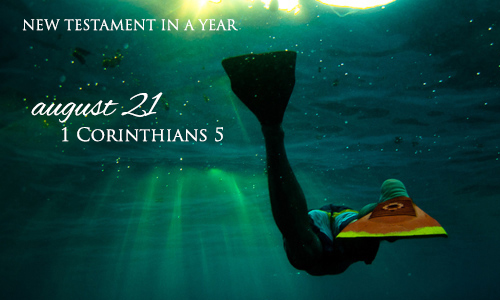 new-testament-in-a-year-august-21