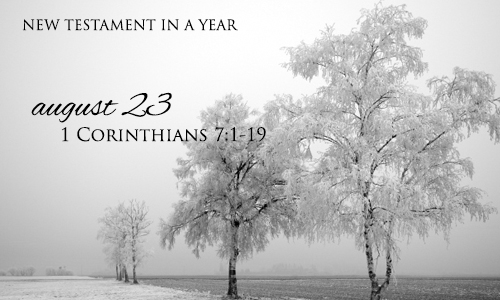 new-testament-in-a-year-august-23