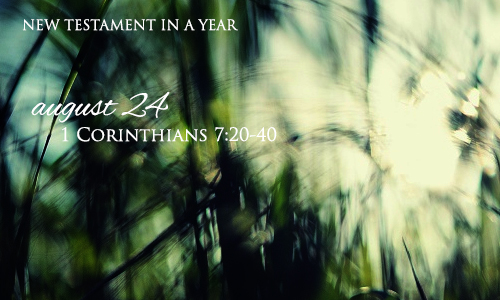 new-testament-in-a-year-august-24