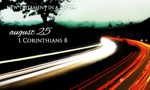 new-testament-in-a-year-august-25