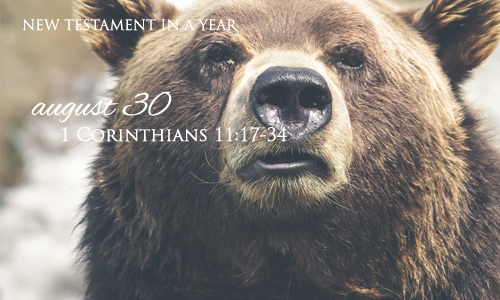 new-testament-in-a-year-august-30