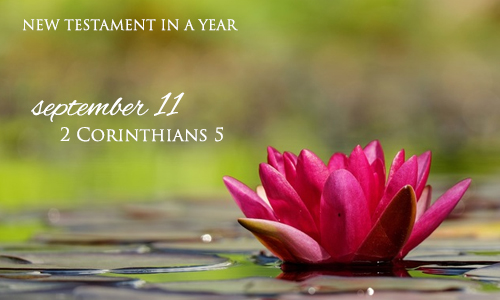 new-testament-in-a-year-september-11