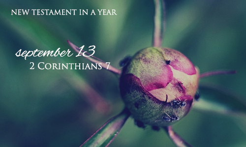 new-testament-in-a-year-september-13