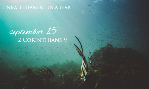 new-testament-in-a-year-september-15