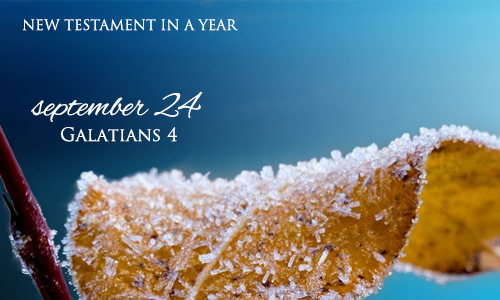 new-testament-in-a-year-september-24