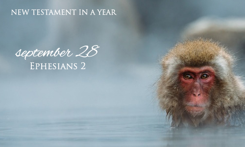 new-testament-in-a-year-september-28