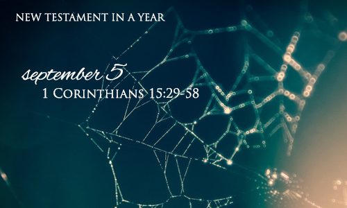 new-testament-in-a-year-september-5