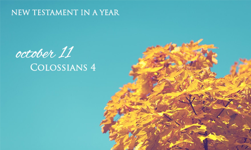 new-testament-in-a-year-october-11