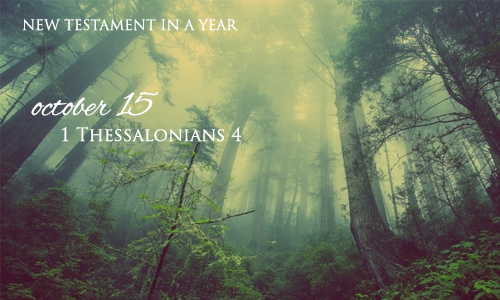 new-testament-in-a-year-october-15
