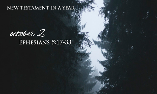 new-testament-in-a-year-october-2