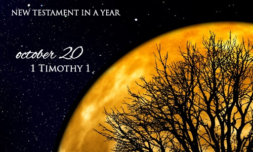 new-testament-in-a-year-october-20