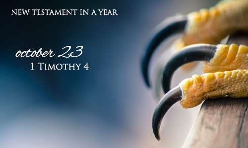 new-testament-in-a-year-october-23