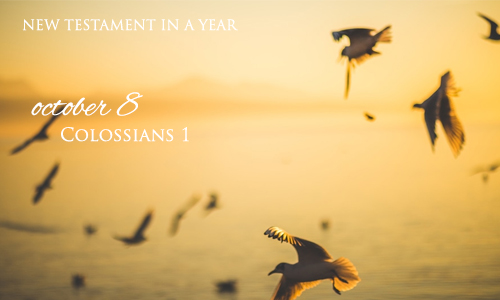 new-testament-in-a-year-october-8