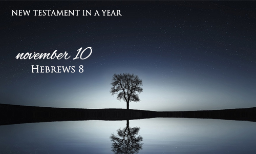 new-testament-in-a-year-november-10