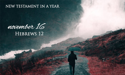 new-testament-in-a-year-november-16