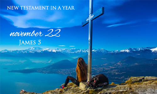new-testament-in-a-year-november-22