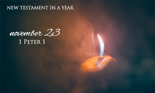 new-testament-in-a-year-november-23