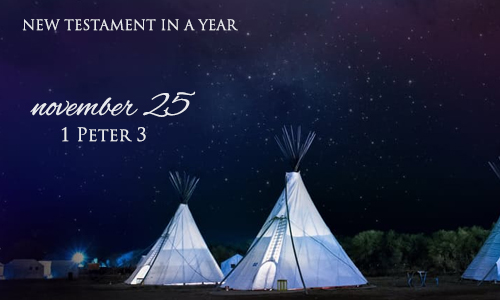 new-testament-in-a-year-november-25