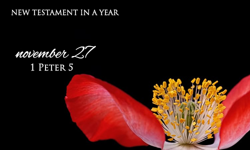 new-testament-in-a-year-november-27