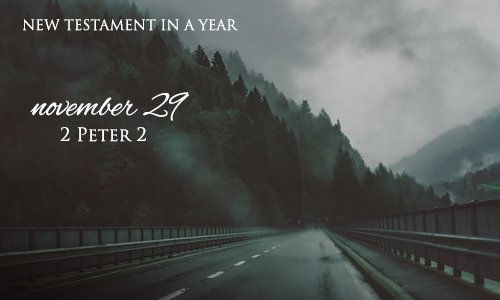 new-testament-in-a-year-november-29