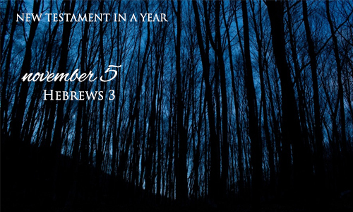 new-testament-in-a-year-november-5