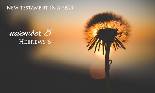new-testament-in-a-year-november-8