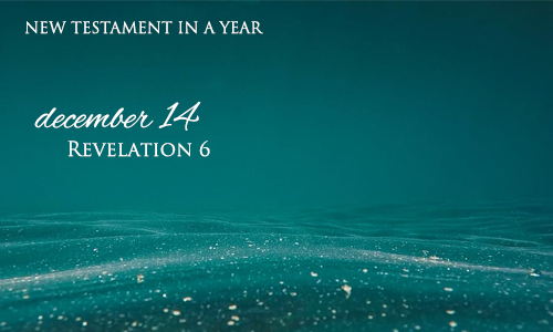 new-testament-in-a-year-december-14