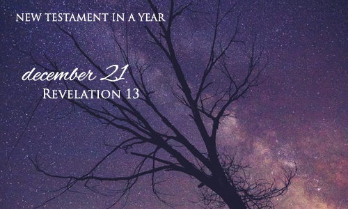 new-testament-in-a-year-december-21