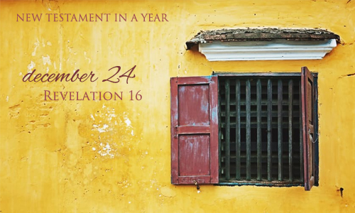 new-testament-in-a-year-december-24
