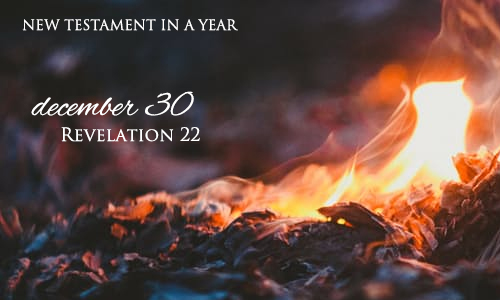 new-testament-in-a-year-december-30