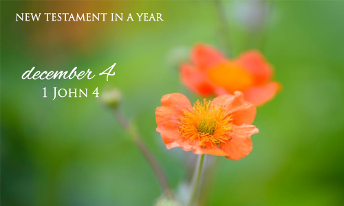 new-testament-in-a-year-december-4