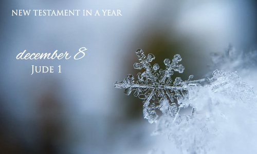 new-testament-in-a-year-december-8