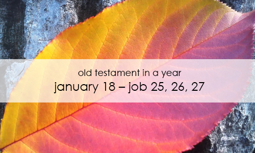 old-testament-in-a-year-january-18