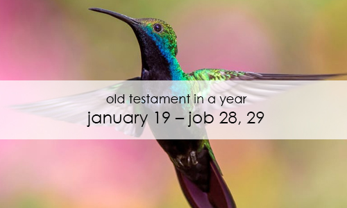 old-testament-in-a-year-january-19