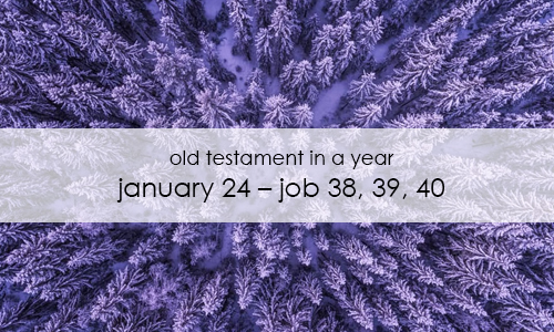 old-testament-in-a-year-january-24