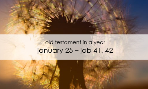 old-testament-in-a-year-january-25