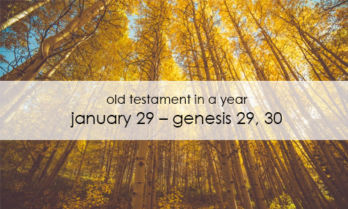 old-testament-in-a-year-january-29