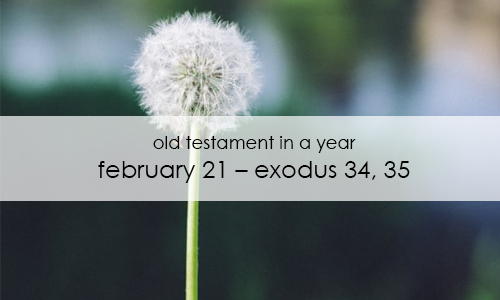 old-testament-in-a-year-february-21
