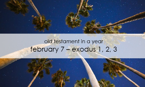 old-testament-in-a-year-february-7